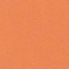 Licht Oranje 101